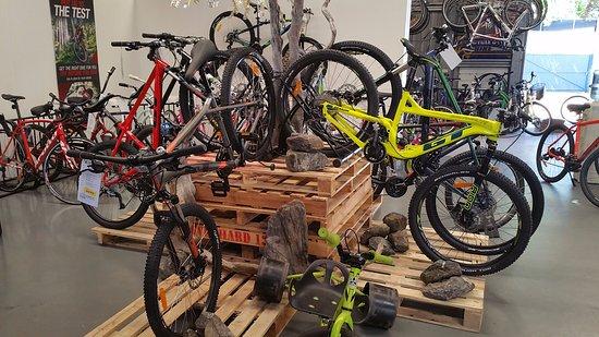Mountain Bike Display Picture Of Bike Shop Hire Port Douglas