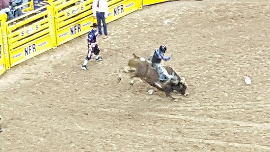 Arena For National Finals Rodeo Picture Of Thomas Amp Mack