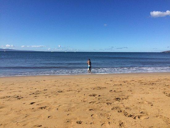 Maalaea Surf Resort : Family trip in dec 2016.