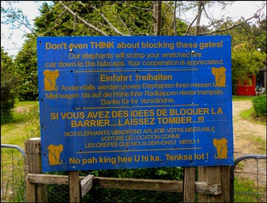 St Marys, ออสเตรเลีย: Beware of the Elephant parking attendants.