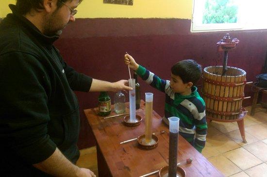 Riojatrek: Testing the sugar content of water vs. grape juice vs. wine.