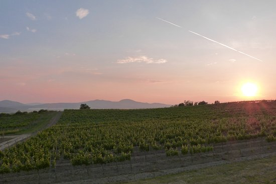 Kosice Region, Slovakia: Sunset over vineyards behind Mala Trna