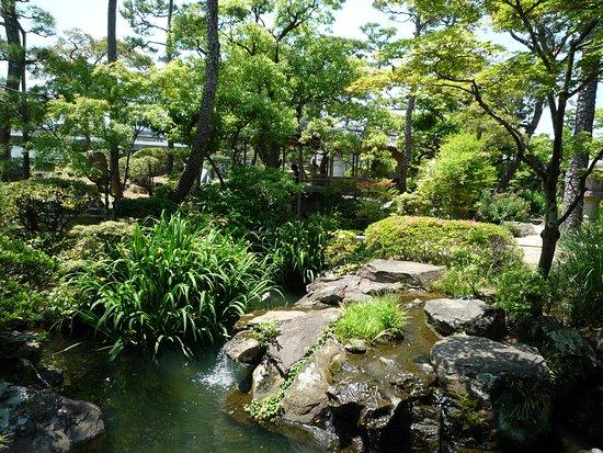 Shinkeien