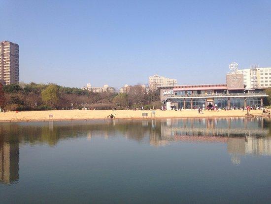Qingfeng Park
