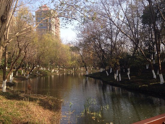 One of beautiful park in Changzhou