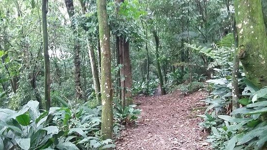 Parque Previdencia