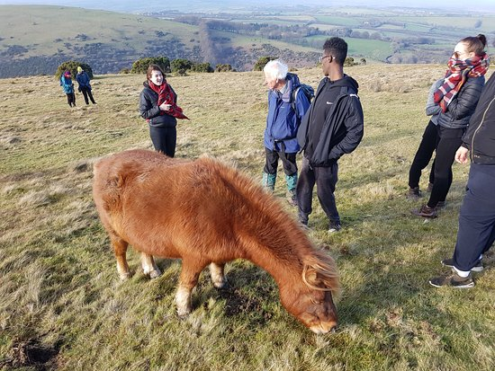 Fowley Cross, UK: Students from Hammersmith College on a guided walk with Martin