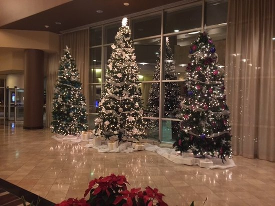 sheraton arlington hotel gorgeous christmas decor good for picture background