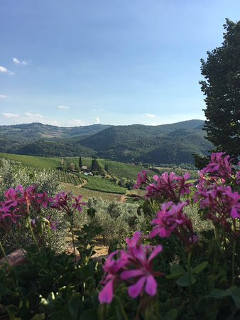 Foto de Agriturismo Patrizia Falciani