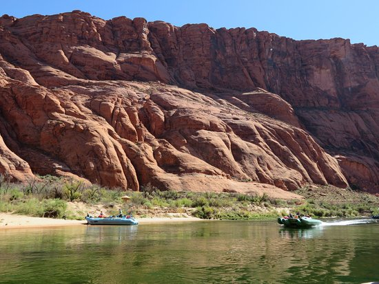 Colorado River Discovery >> Zona De Playa Picture Of Colorado River Discovery Page