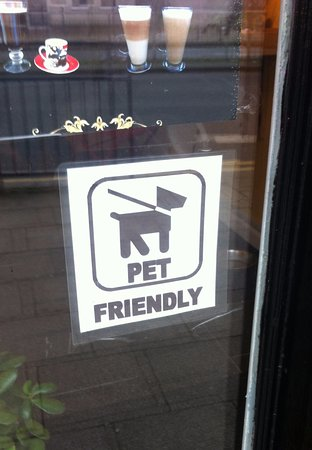 Not many places you can take your dog! How great is that?