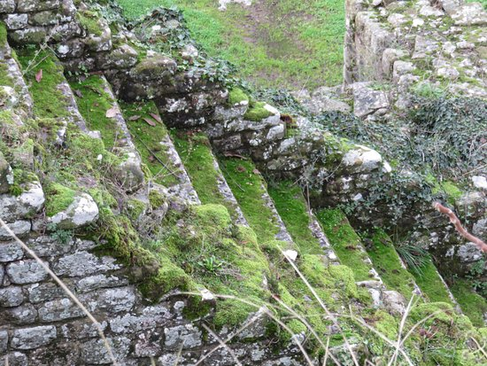 San Domenico Fiesole : steps at amplitheater