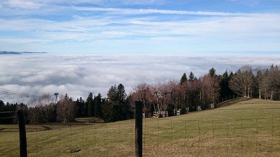 Pfaenderbahn: Unten Nebel oben Sonnenschein ☀