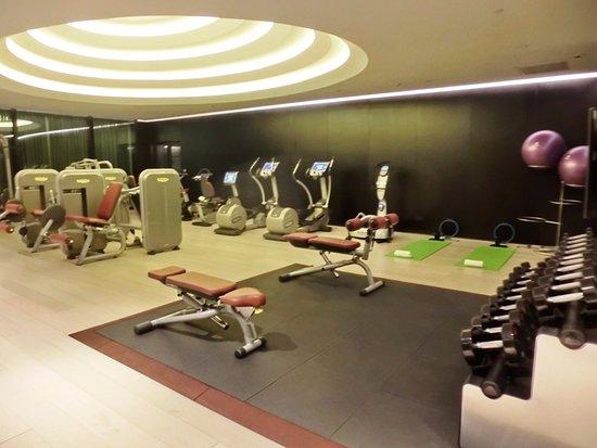Elegant Design Home Gym