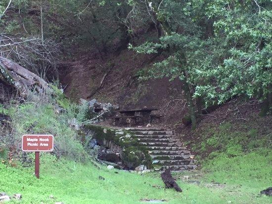 Clayton, Калифорния: Maple Nook Picnic Area