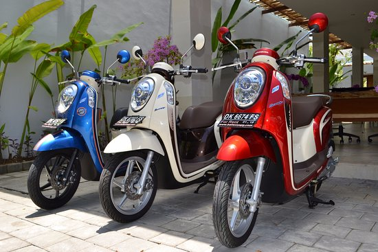 Bali Jaya Rental