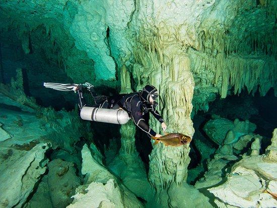 Cenote Xperience