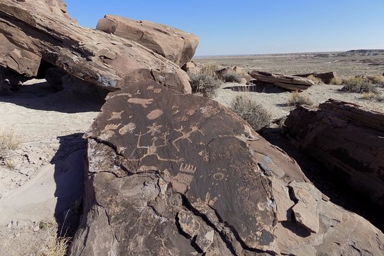 Parque Nacional del Bosque Petrificado, AZ: Petroglyphs around the butte.