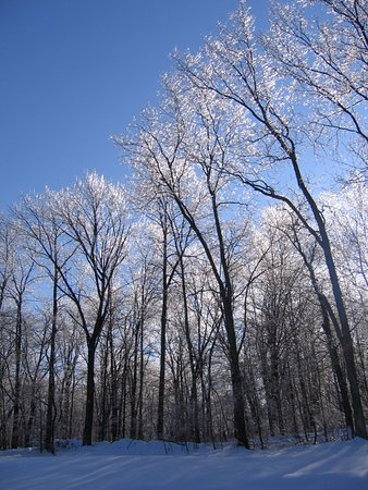 "Коннектикут: Infrequent Ice Storms in Northwest Hills of Litchfield County-Watch ""The Ice Storm"" feature film"