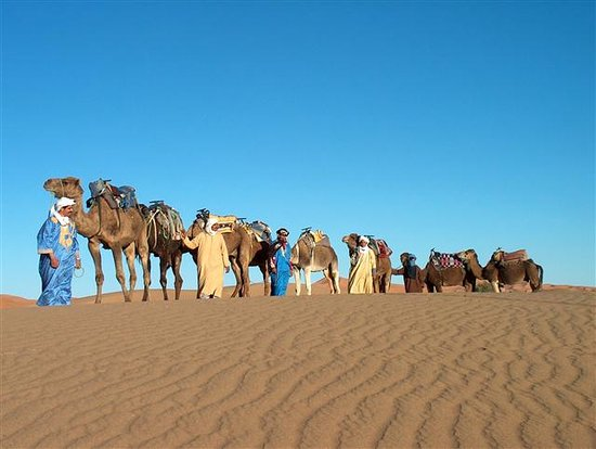 Soul Adventure 4x4 Day Tours: Camel and theire guides are ready to make a wonderful trip in the Sahara desert