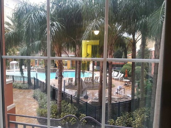Homewood Suites by Hilton Lake Buena Vista-Orlando: This was the nice view of the pool area from my room 203. As you can see pool area very clean.