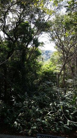 Provincia de San Jose, Costa Rica: IMG-20161215-WA0024_large.jpg