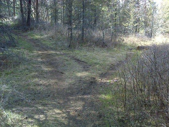 Vernon, Kanada: Ellison Park Trails