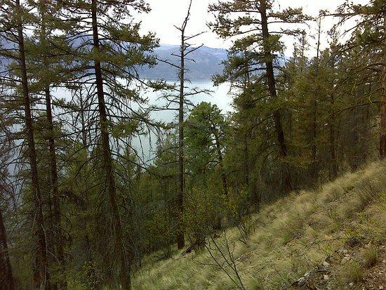 เวอร์นอน, แคนาดา: Ellison Park Trails