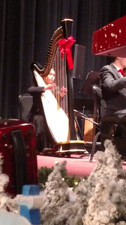 The harpist-Melodies of Christmas - Picture of Proctor's Theater ...