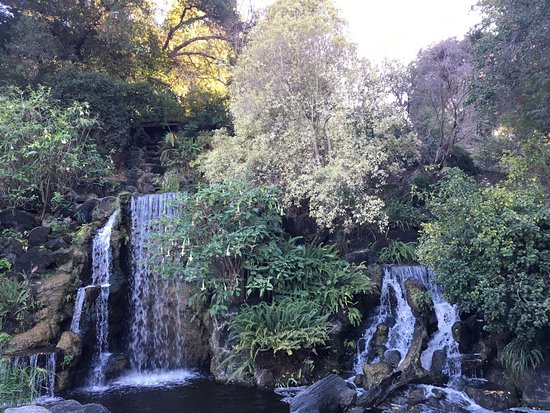 Los Angeles County Arboretum Botanic Garden Picture Of Los Angeles County Arboretum