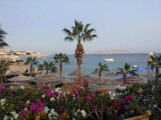 فندق رويال سافوى شرم الشيخ: View from resort