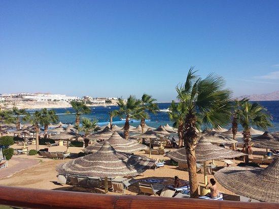 فندق رويال سافوى شرم الشيخ: Beach area