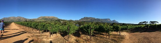 Constantia, South Africa: photo0.jpg