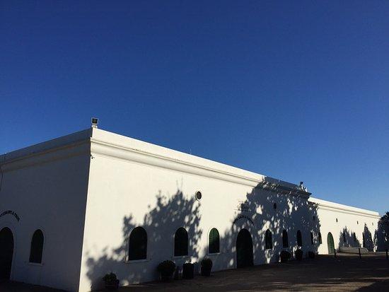 Constantia, Sudáfrica: photo8.jpg