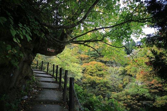 Ginzan Yuhodo: 白銀の滝脇の遊歩道