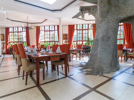The Baobab Restaurant: Enjoy a meal surrounded by good lighting..