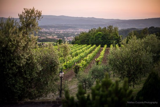 Agriturismo Savernano: The view from our dinning table