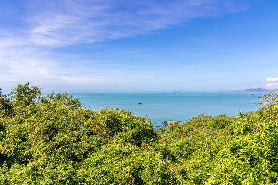 Sanya Daxiaodongtian Area: Лес и море