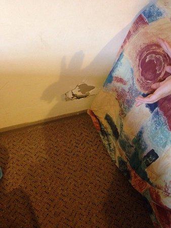 Glendambo Hotel Motel: photo1.jpg