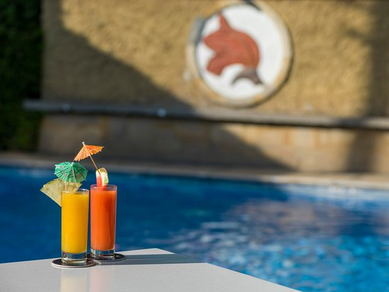 The African Tulip: Refreshment by the pool