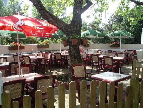 Le Blandonnet: Notre terrasse ombragée