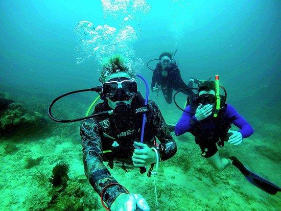 亚庇潜水迷中心