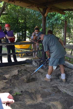 Tjapukai Aboriginal Cultural Park: How they cooked meat