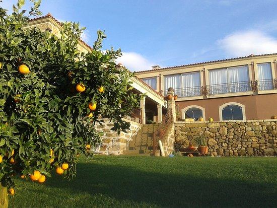 Alpendurada e Matos, Portugalia: Quinta de VillaSete
