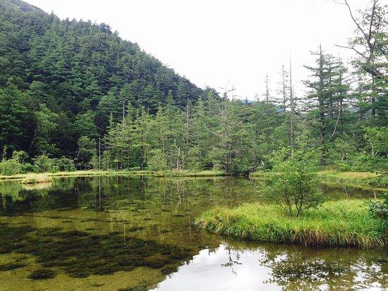 Myojin Pond: photo3.jpg