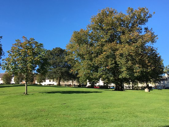 Eaglesham, UK: Delightful parkland called the 'Orry' right on our doorstep!