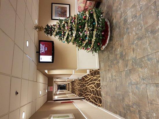 DoubleTree by Hilton Hotel Buffalo - Amherst : 20161216_232940_large.jpg