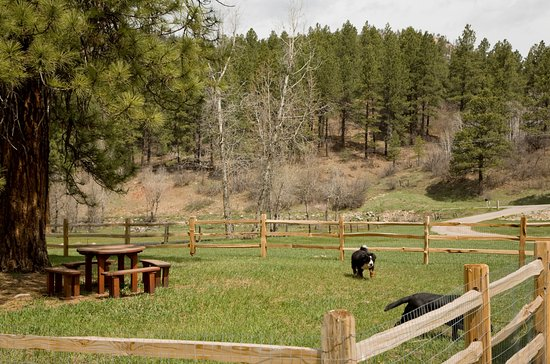 O bar o cabins updated 2017 b b reviews price for Cabins to stay in durango colorado
