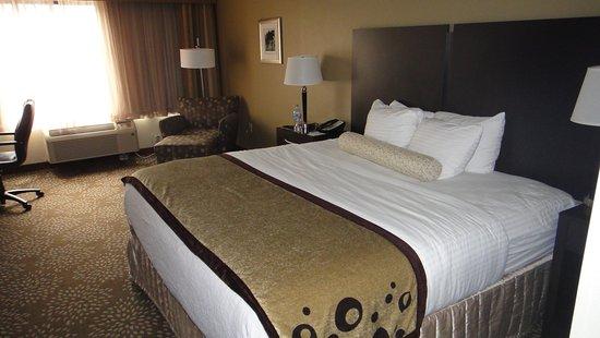 Foto de BEST WESTERN PLUS Madison-Huntsville Hotel