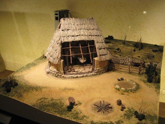 MAEC - Museo dell'Accademia Etrusca Photo